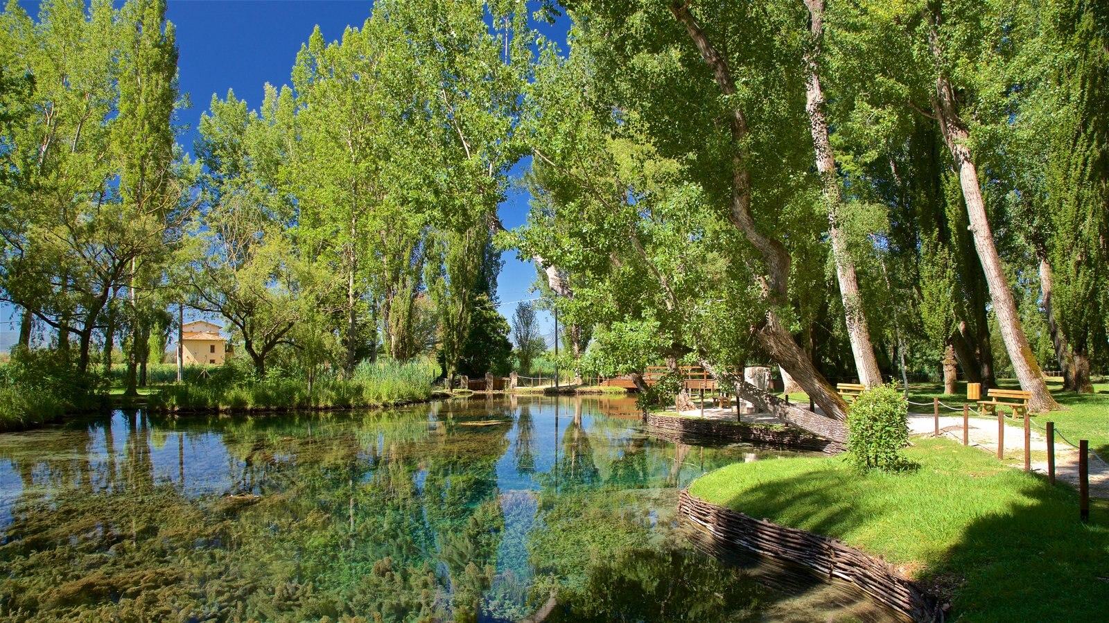 Manantial de Clitunno mostrando un parque y un río o arroyo