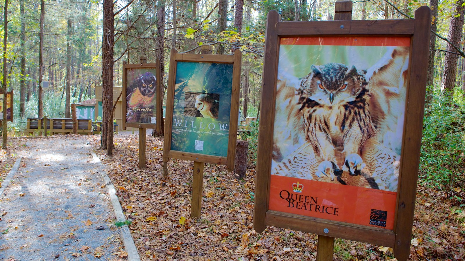 Carolina Raptor Center featuring forests, a park and art
