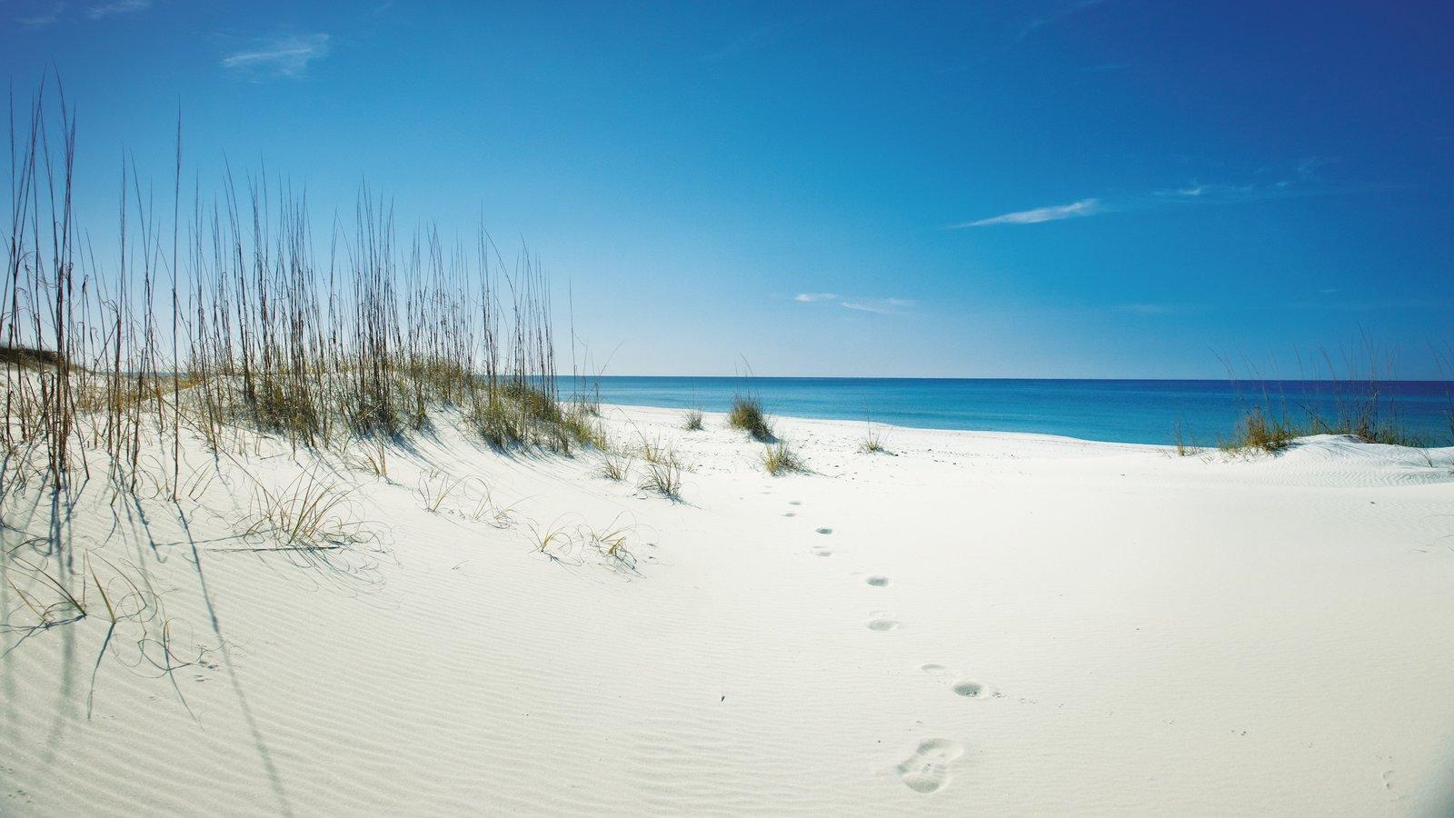 Panama City Beach que inclui paisagem e uma praia
