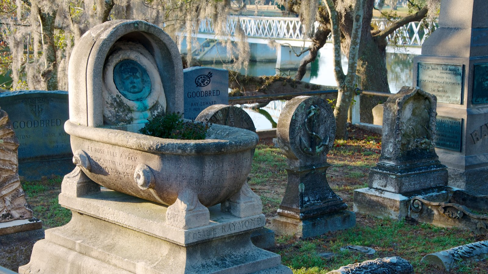 Magnolia Cemetery mostrando um memorial e um cemitério