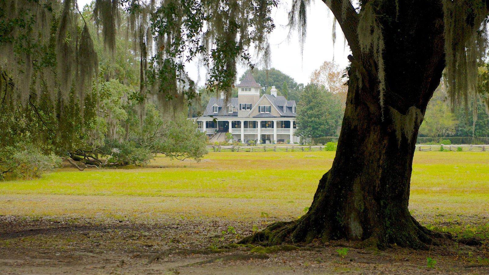 Magnolia Plantation and Gardens mostrando uma casa, paisagem e um jardim