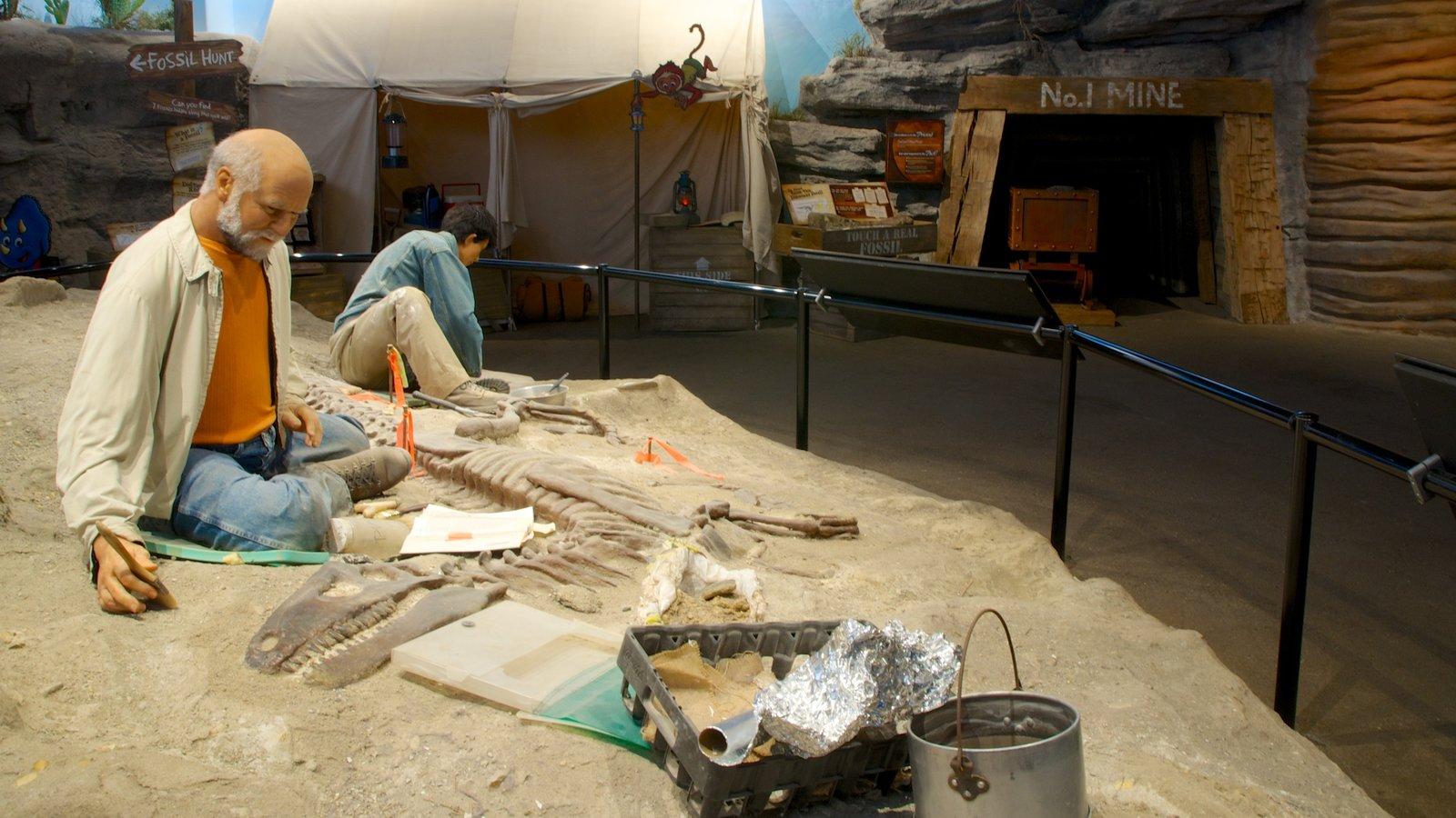 Creation Museum que inclui vistas internas