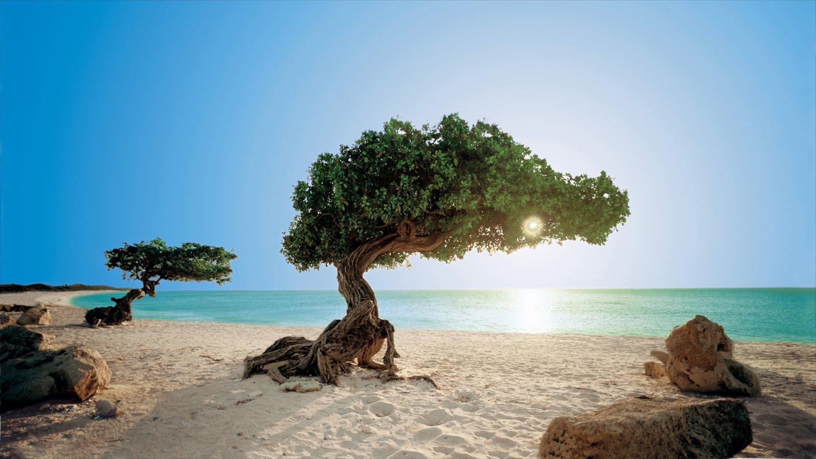 aruba ofreciendo vistas de paisajes y una playa de arena