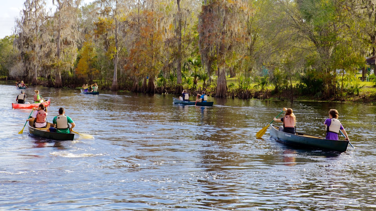 Lettuce Lake Park which includes a garden, a river or creek and kayaking or canoeing
