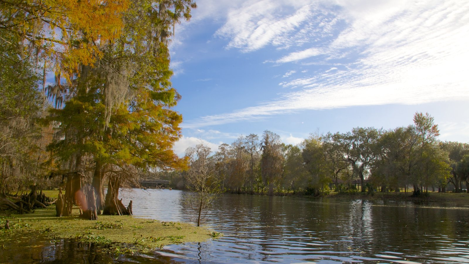 Gardens & Parks Pictures: View Images of Florida
