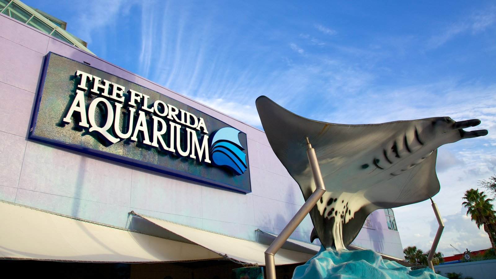 Florida Aquarium showing marine life, signage and modern architecture