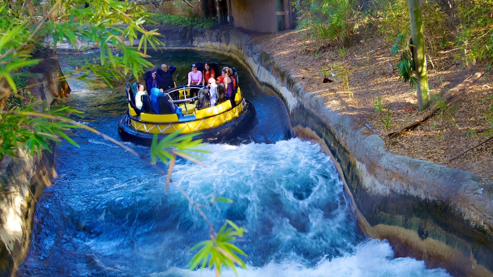 Busch Gardens which includes rides, rapids and rafting