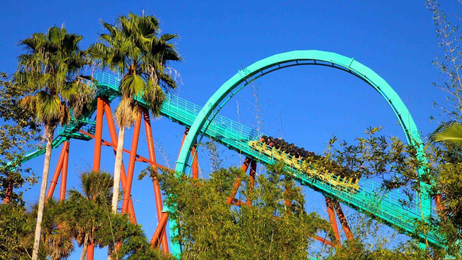 Busch Gardens featuring rides