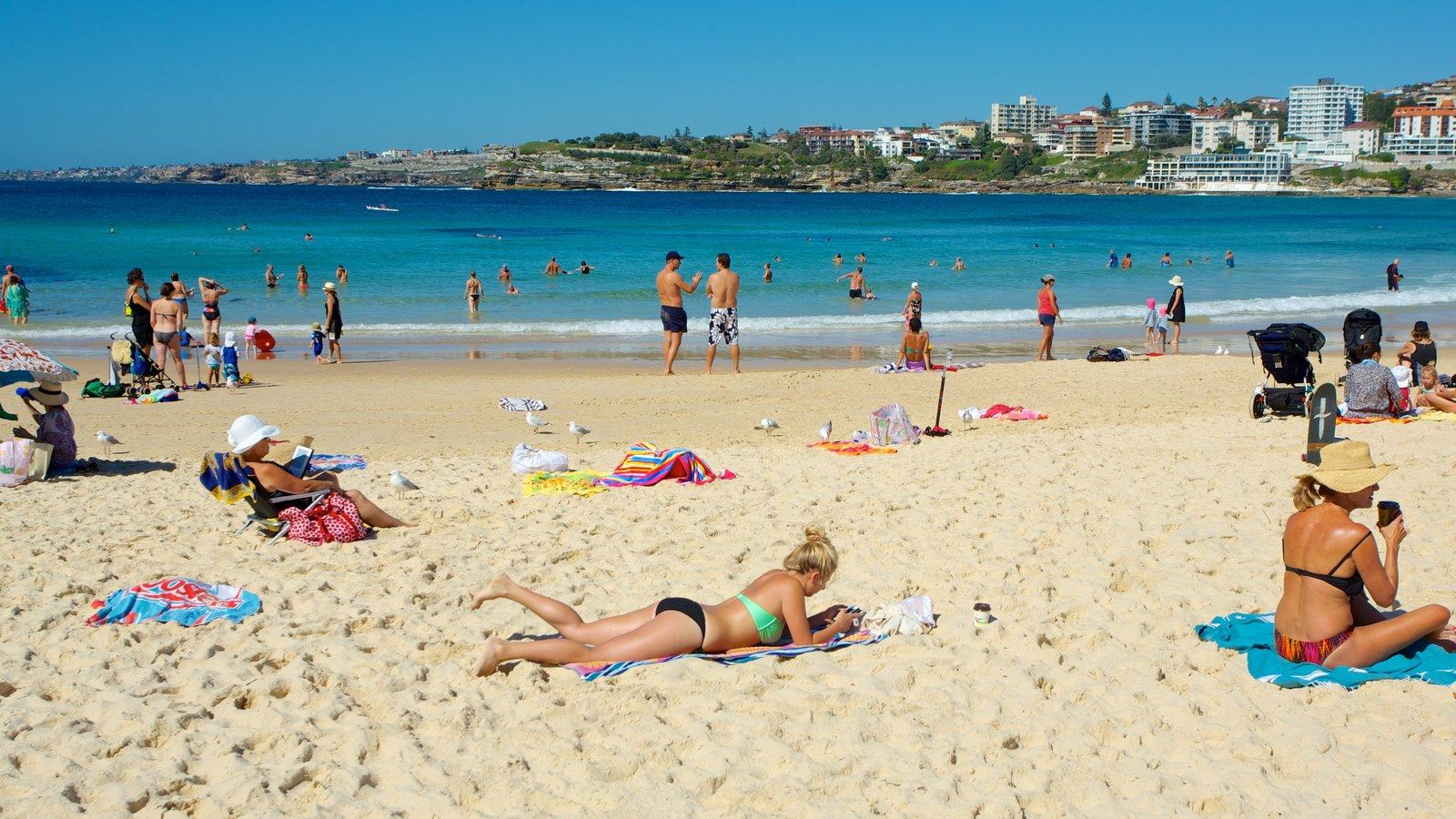 Bondi Beach featuring a beach and tropical scenes