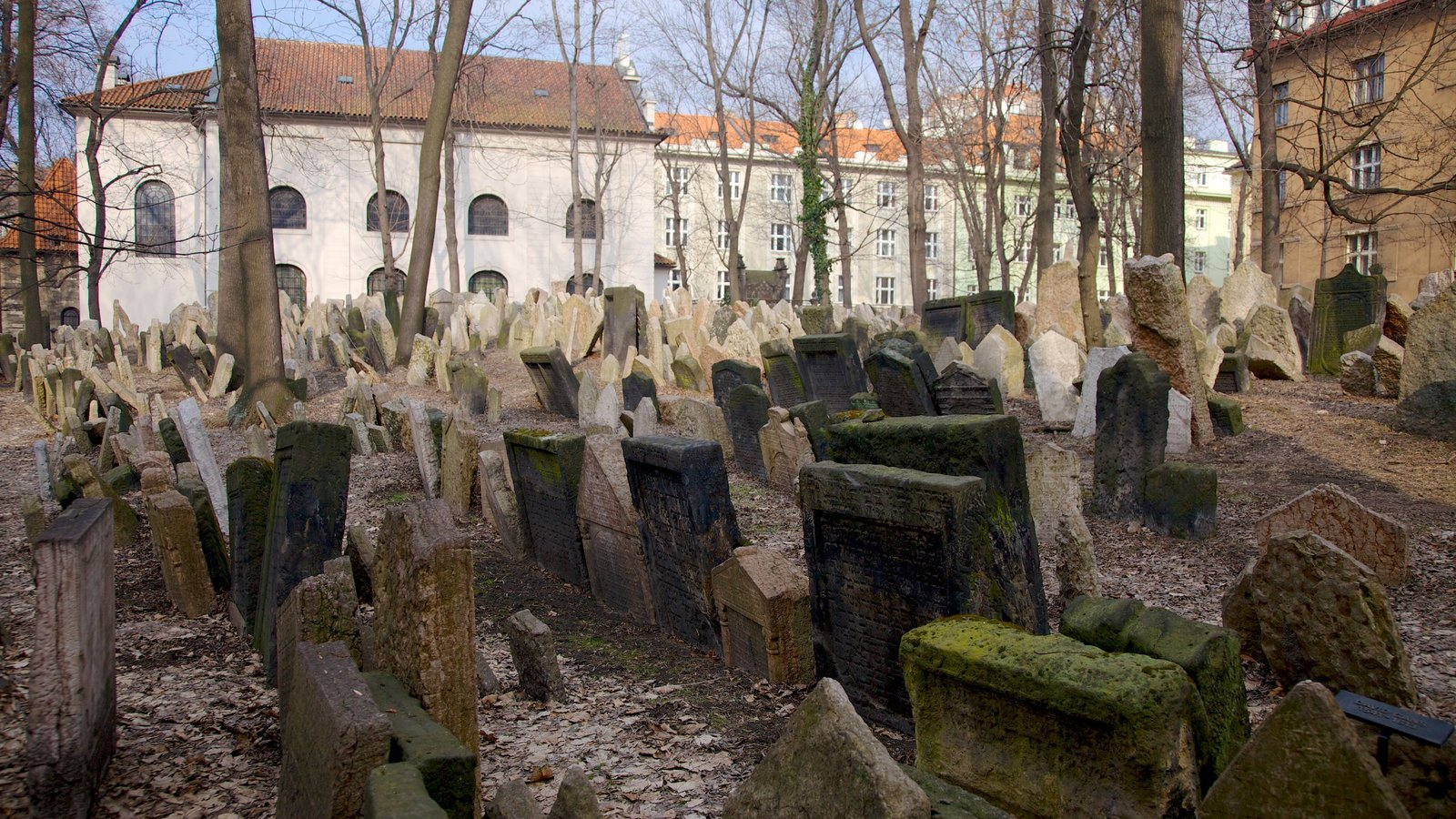 Old Jewish Cemetery which includes a cemetery and a memorial