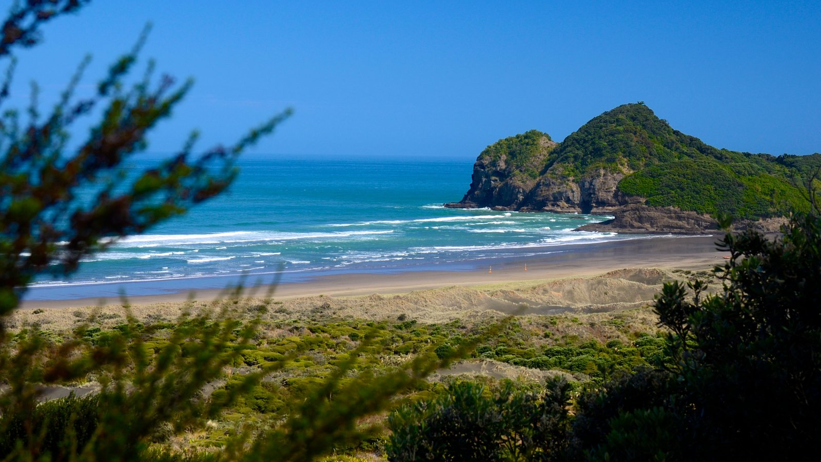 Bethells Beach showing landscape views and general coastal views