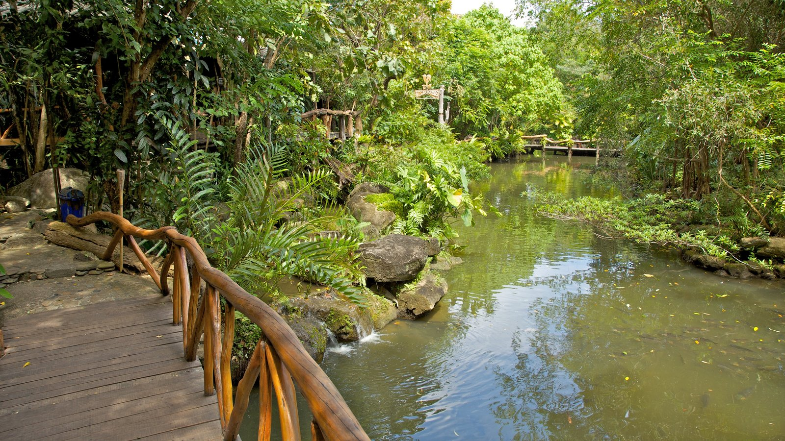 Gardens Parks Pictures View Images Of Asia