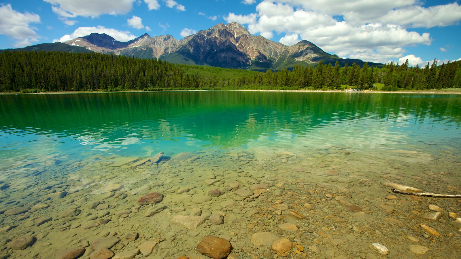 Watch Patricia Lake video