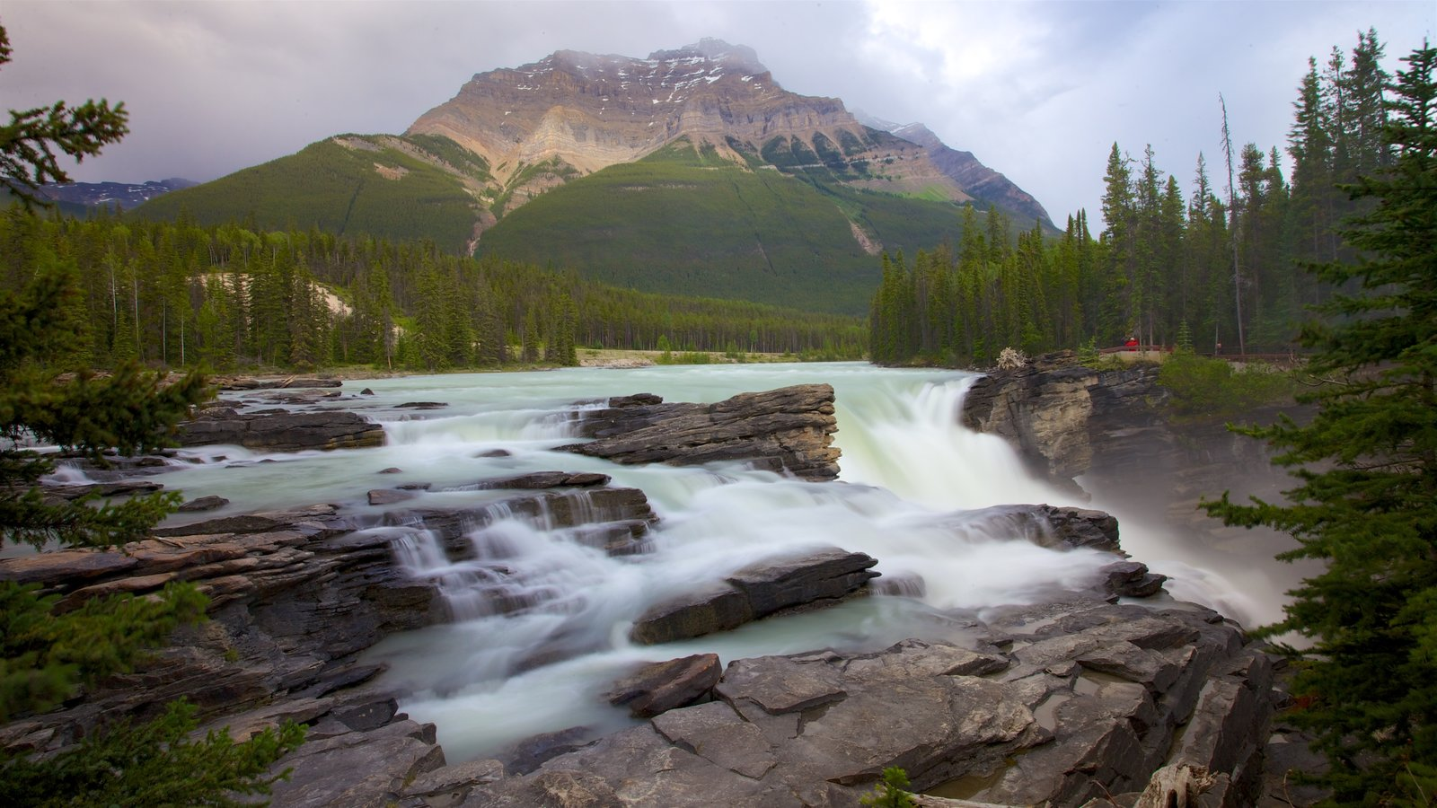 Athabasca Falls showing a cascade, landscape views and mountains