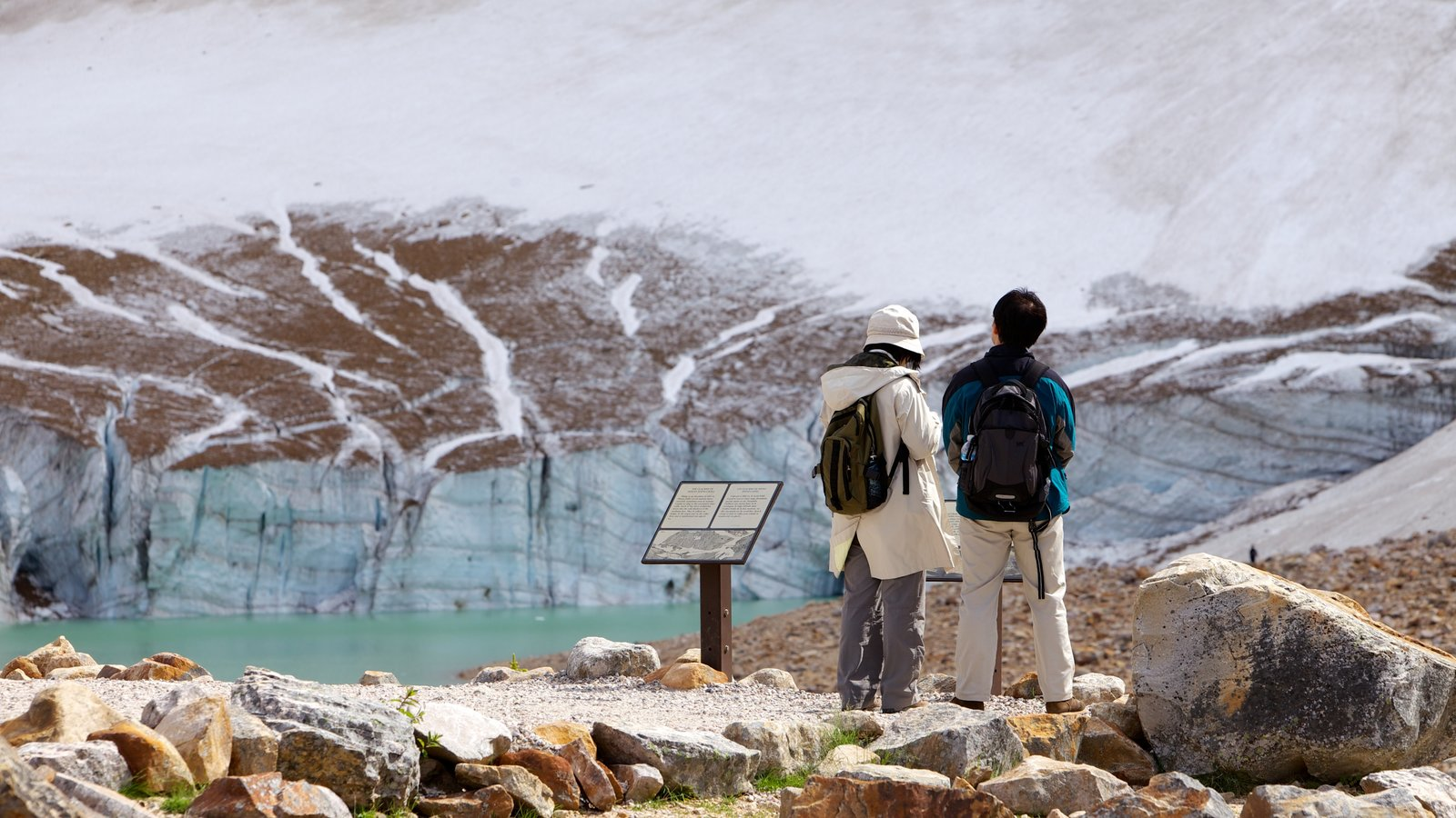 Mount Edith Cavell which includes landscape views, snow and mountains