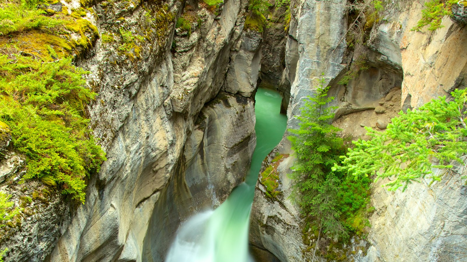 Maligne Canyon which includes landscape views, a gorge or canyon and a river or creek