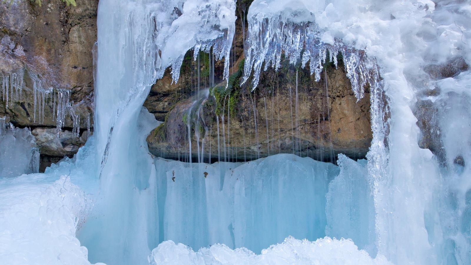 Cañon del Maligne que incluye vistas de paisajes y nieve