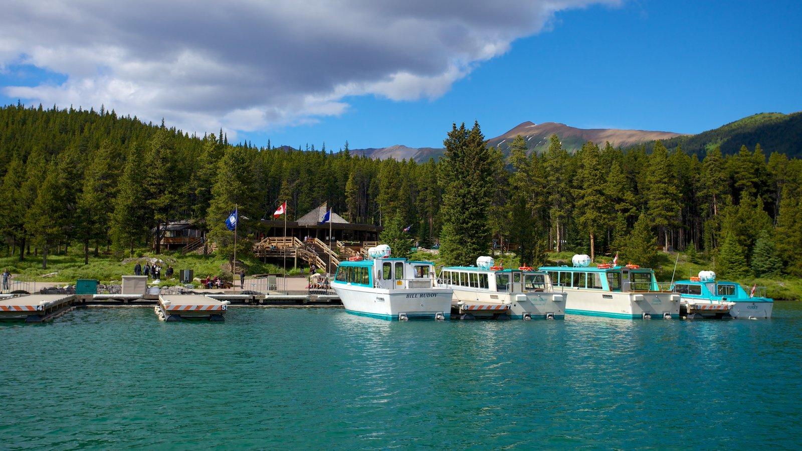Maligne Lake que incluye paseos en lancha, bosques y un lago o abrevadero