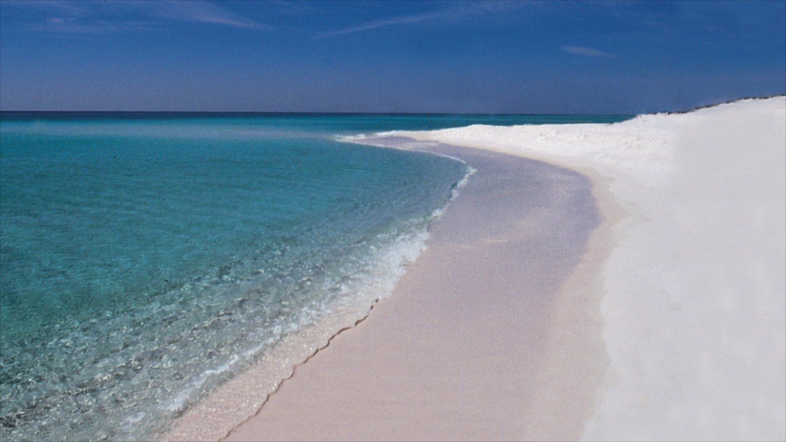 Pensacola Beach which includes a beach and tropical scenes