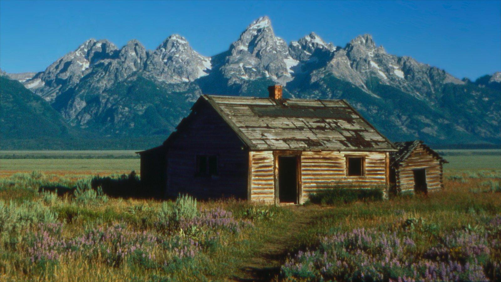 Jackson Hole que inclui uma casa, paisagem e montanhas