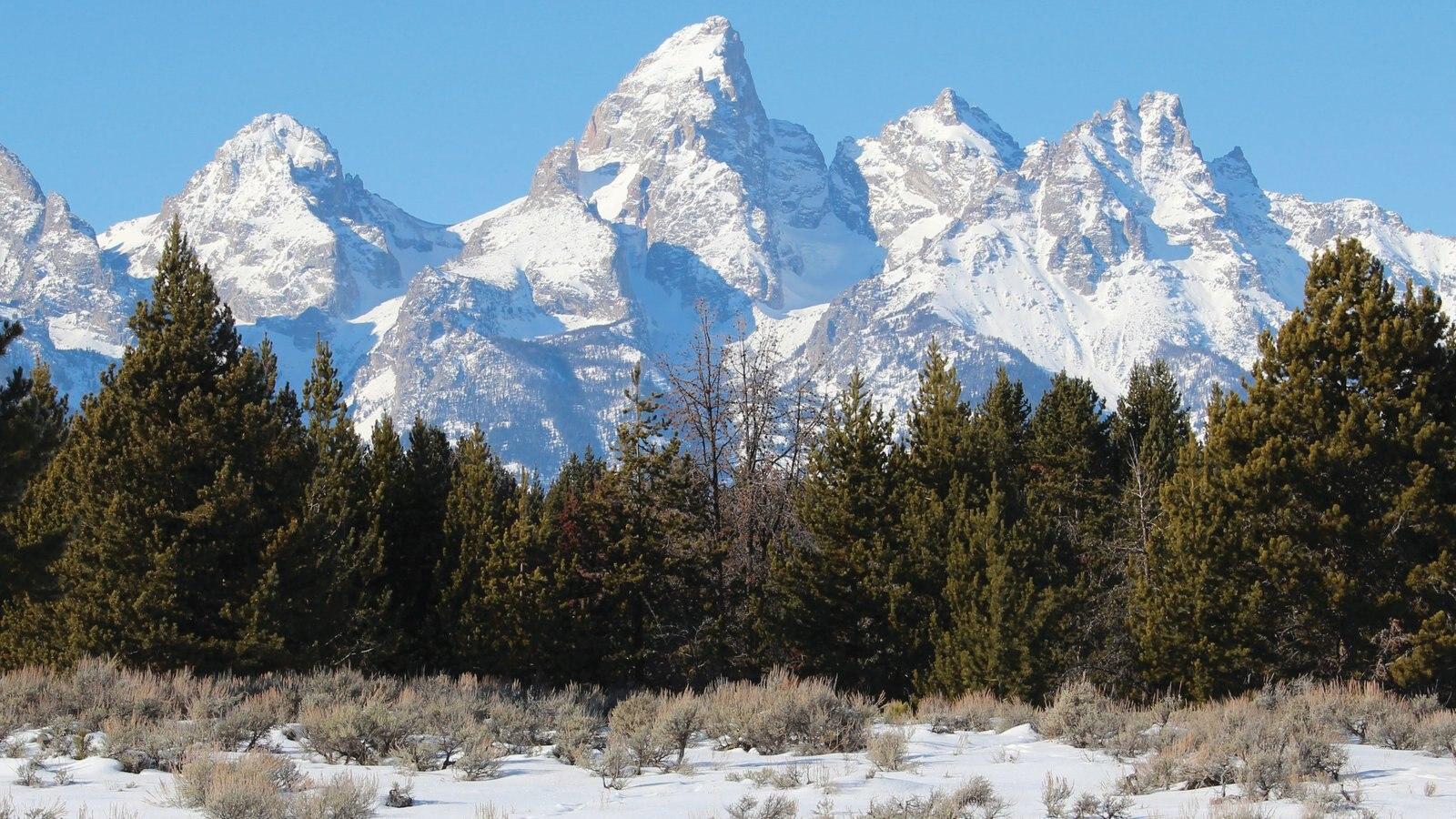 Jackson Hole ofreciendo nieve, montañas y vistas de paisajes