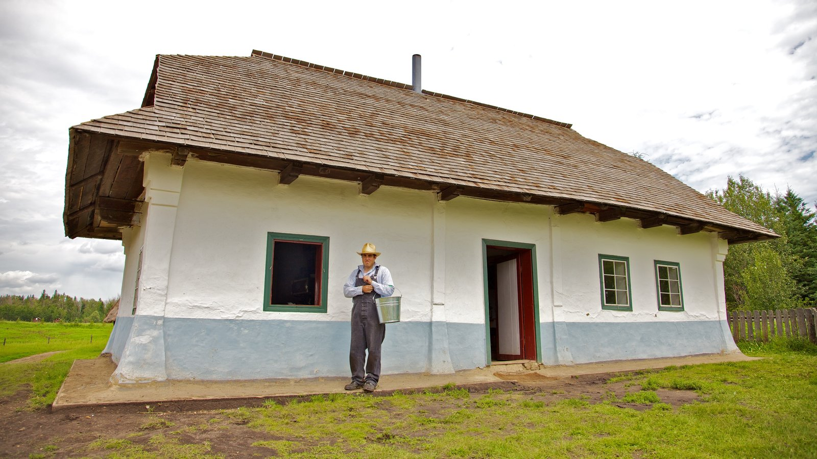 Ukrainian Cultural Heritage Village which includes a house and heritage architecture as well as an individual male