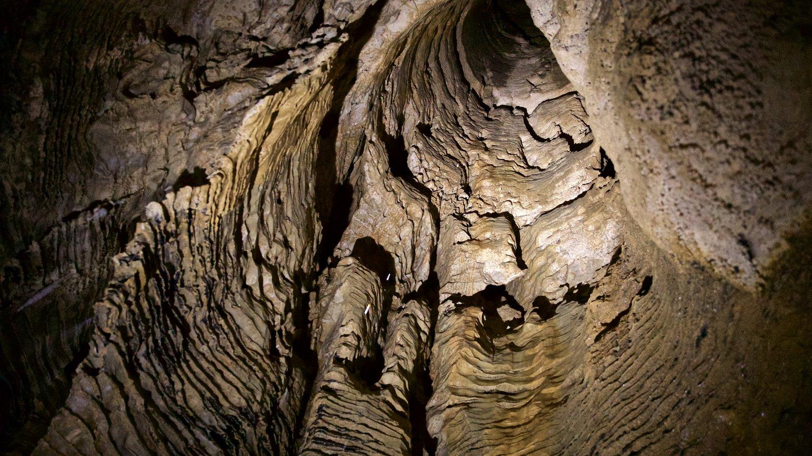 Cavernas de Waitomo caracterizando cavernas