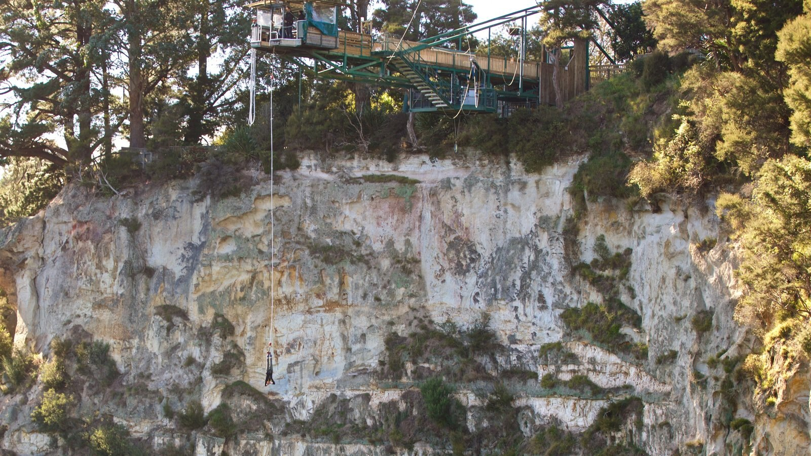 Taupo Bungy mostrando bungee jump e um desfiladeiro ou canyon