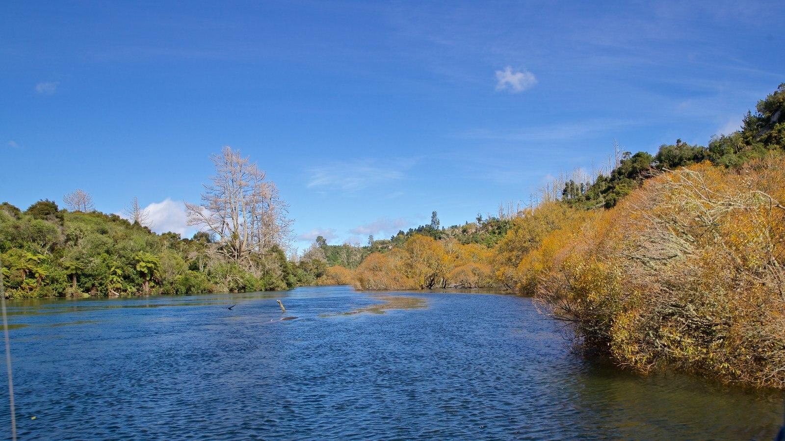 Taupo que inclui um rio ou córrego