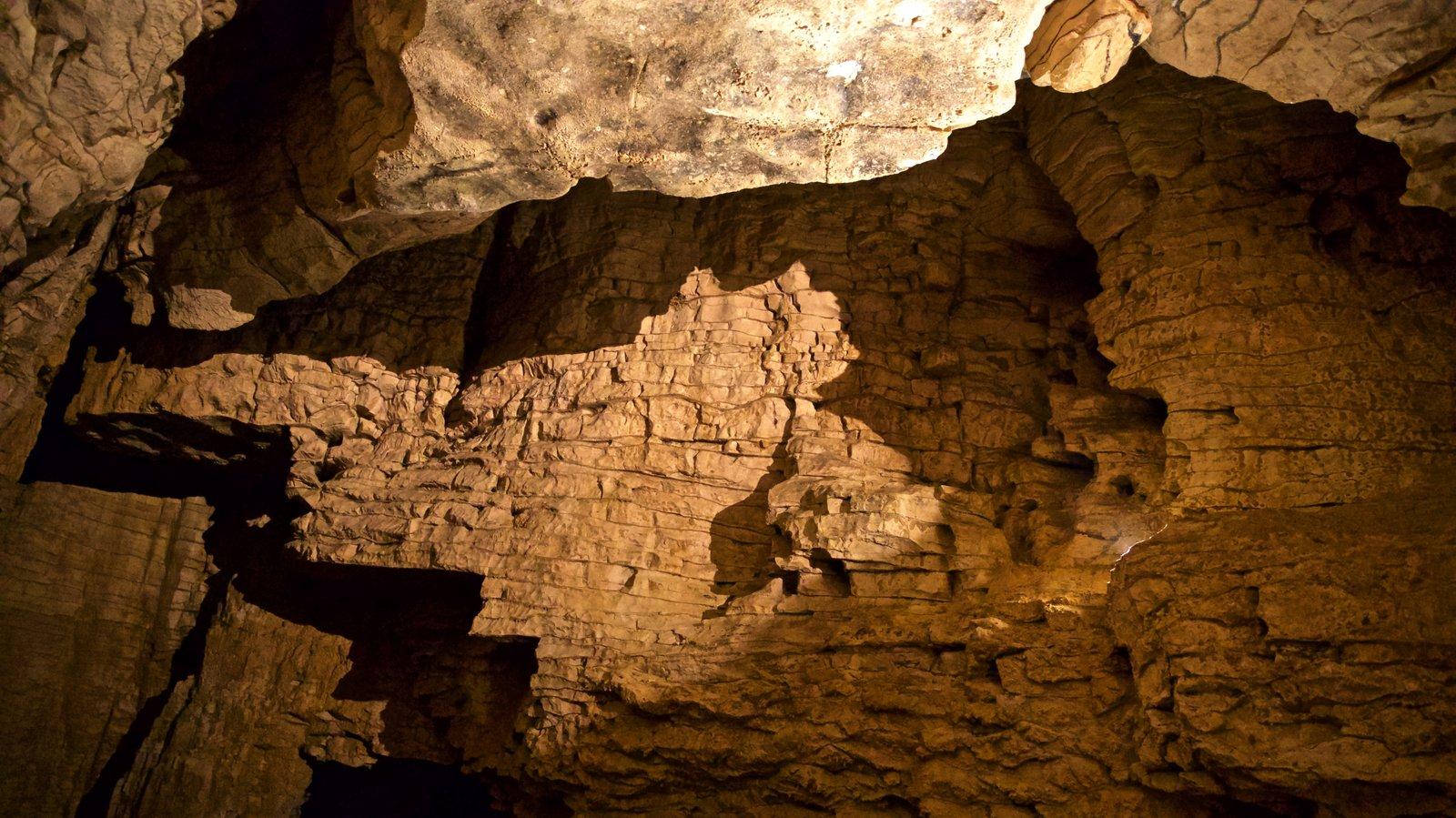 Cavernas de Waitomo mostrando cavernas