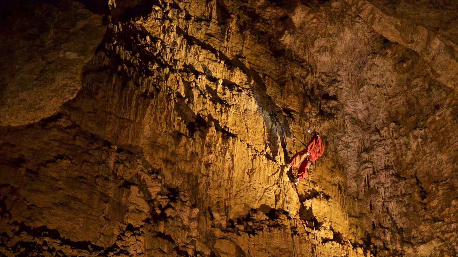 Waitomo Caves featuring caves and caving