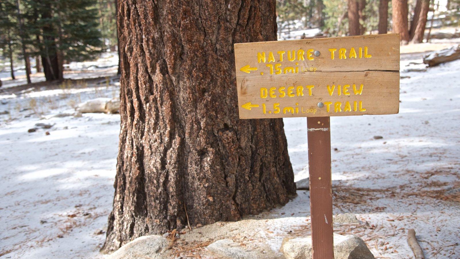 Parque estatal Mount San Jacinto ofreciendo escenas forestales, señalización y nieve