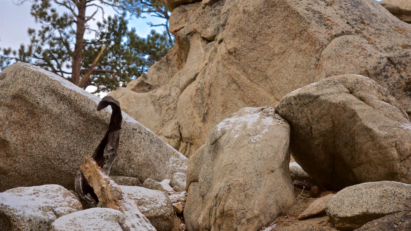 Parque estatal Mount San Jacinto que incluye escenas tranquilas