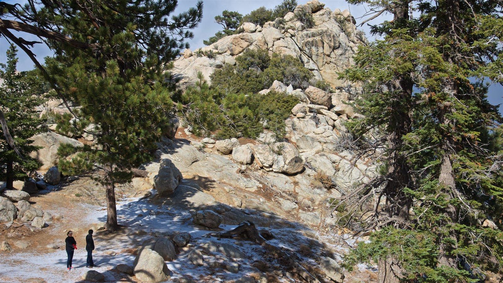 Parque estatal Mount San Jacinto mostrando montañas y también una pareja
