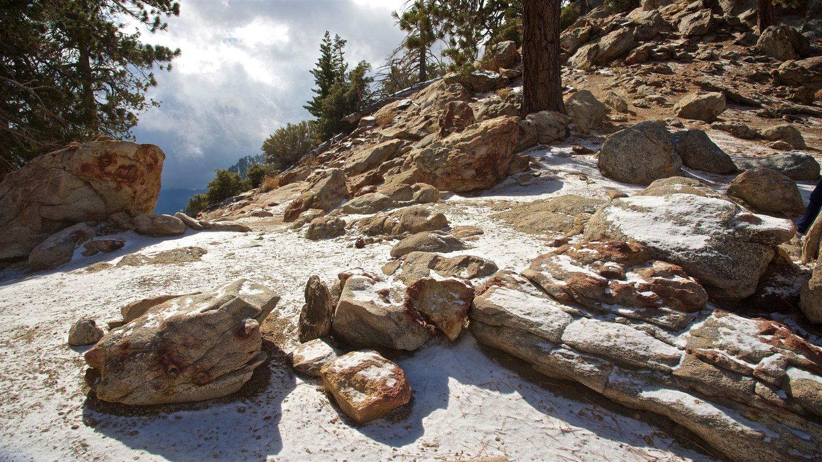 Parque estatal Mount San Jacinto que incluye escenas tranquilas y montañas