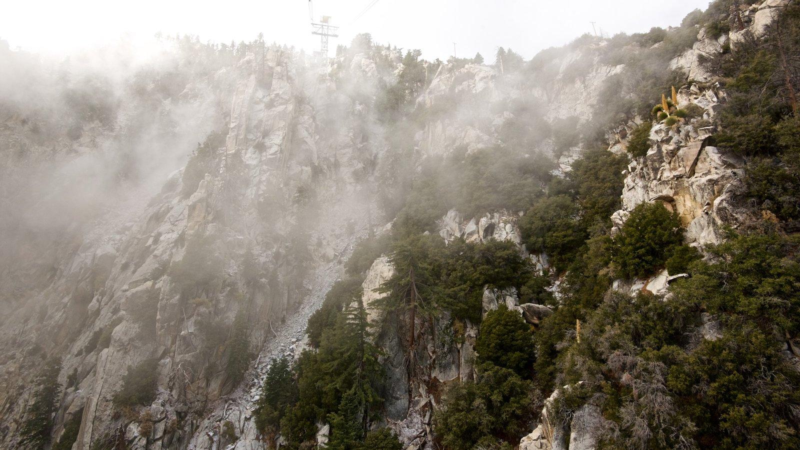 Teleférico de Palm Springs ofreciendo neblina o niebla y montañas