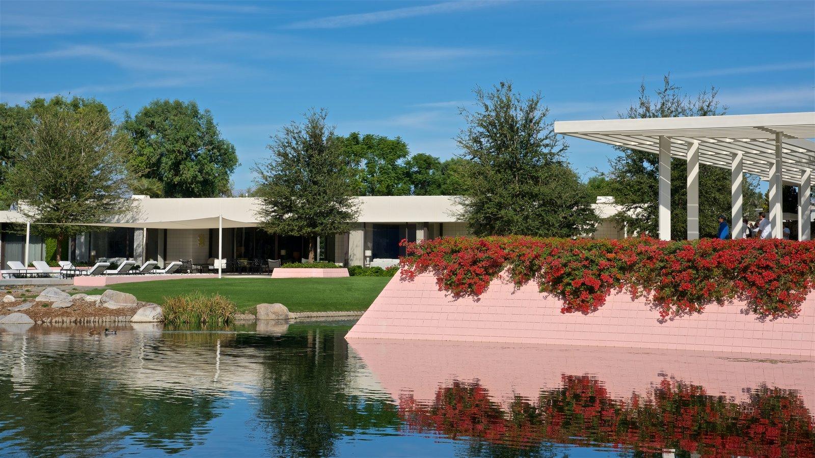 Centro Sunnylands y jardines que incluye un lago o abrevadero y flores silvestres