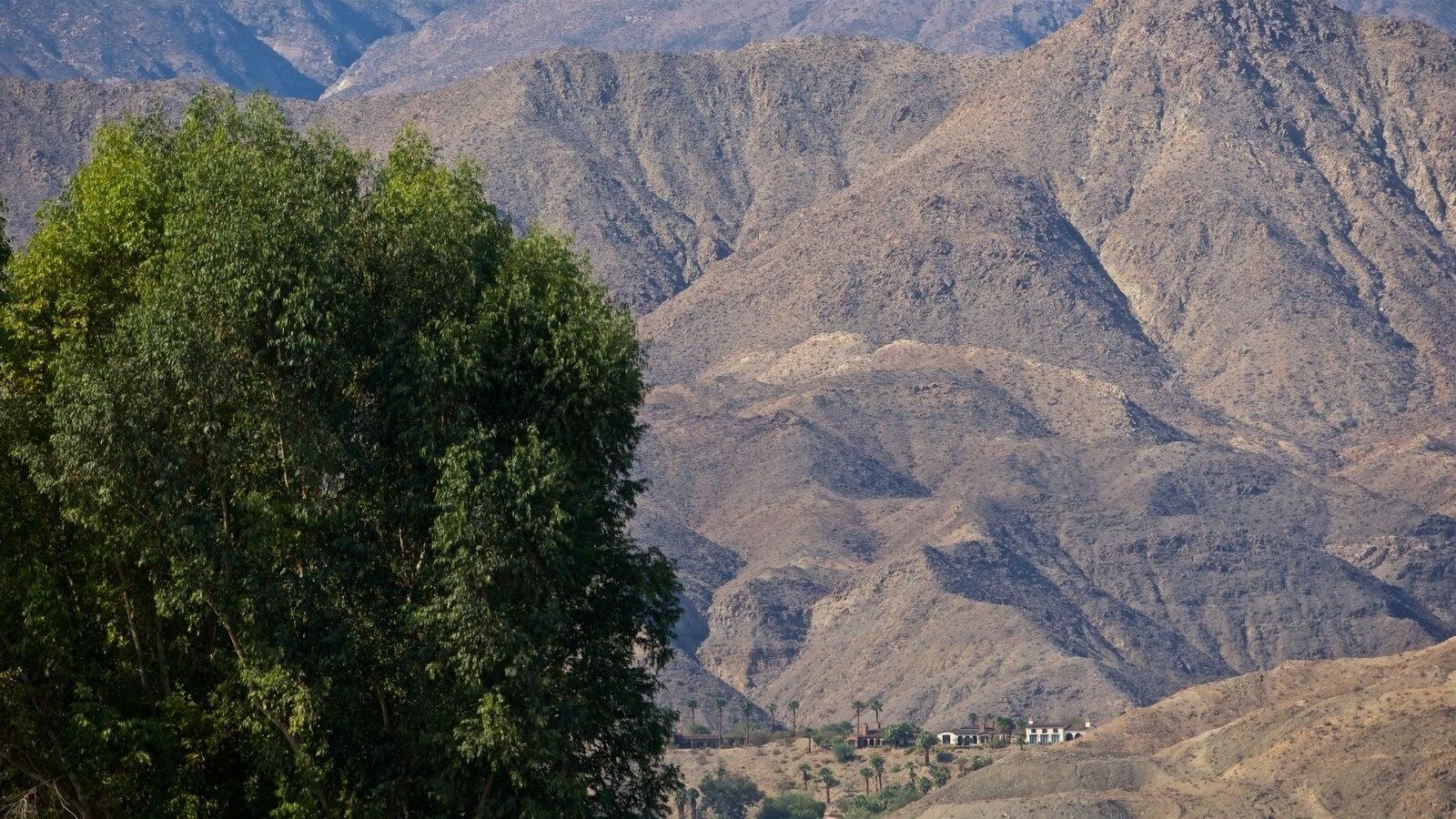 Centro Sunnylands y jardines ofreciendo montañas