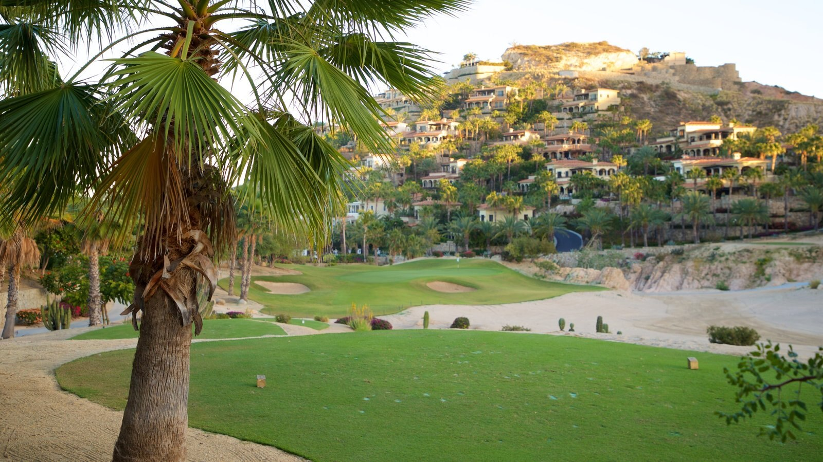San Jose del Cabo featuring golf