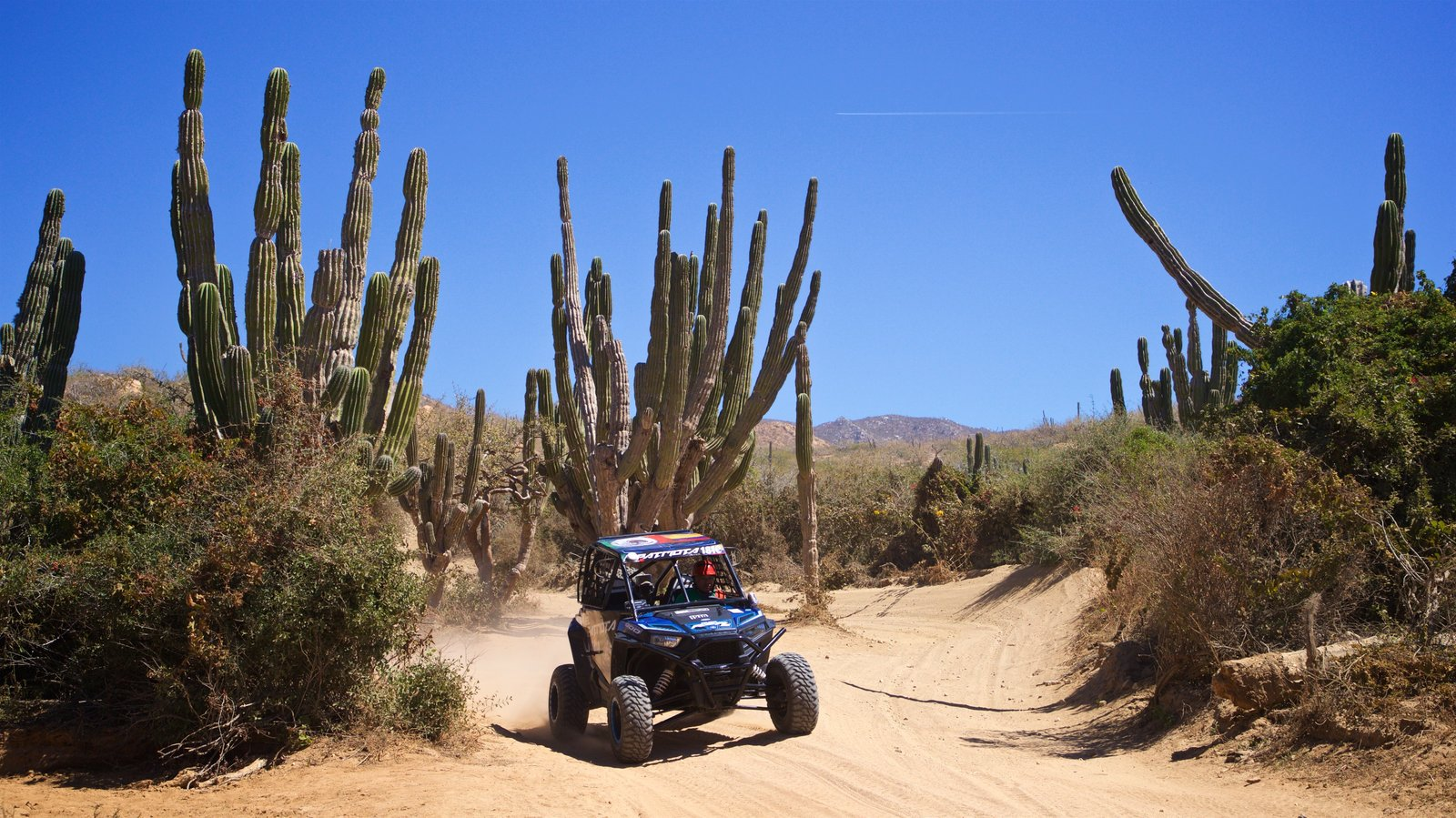 Migrino which includes 4 wheel driving and desert views