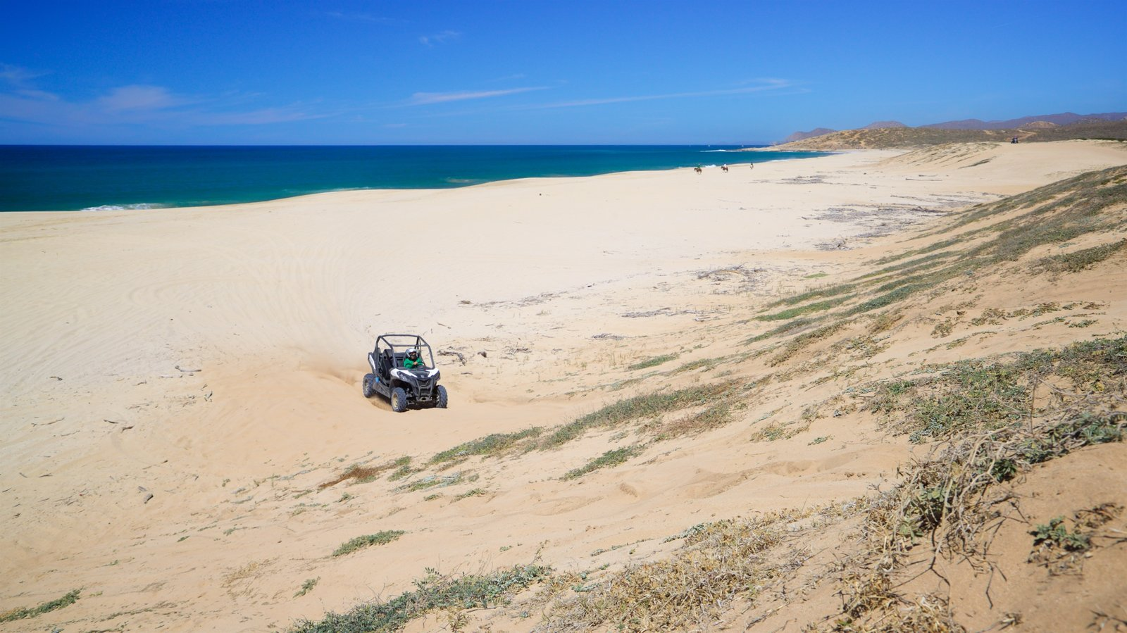 Migrino featuring general coastal views, off road driving and a sandy beach