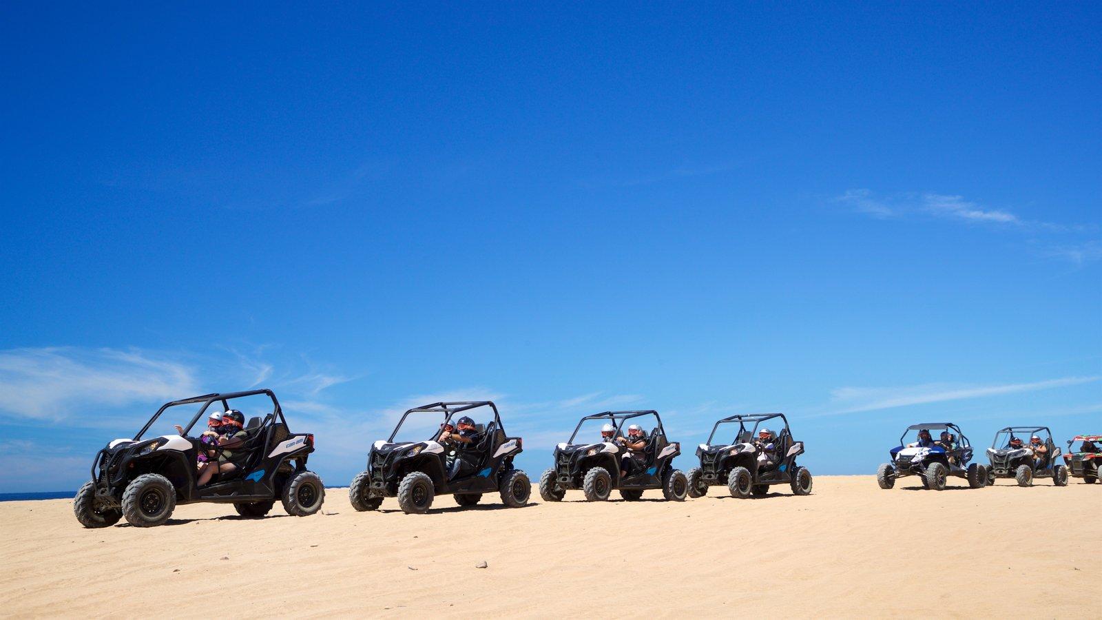 Migrino showing general coastal views, a beach and 4 wheel driving