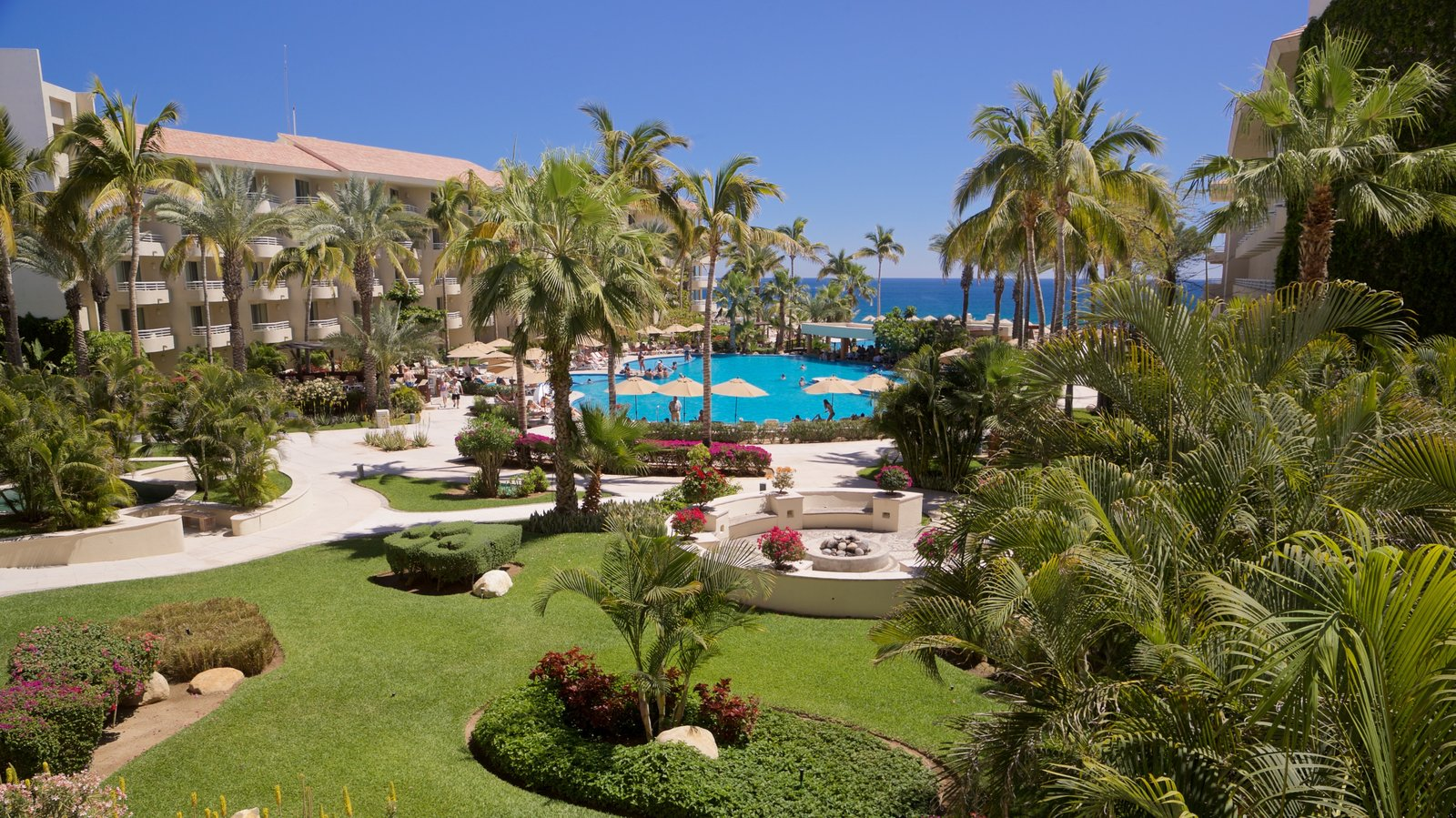 Zona Hotelera which includes a garden, tropical scenes and a hotel