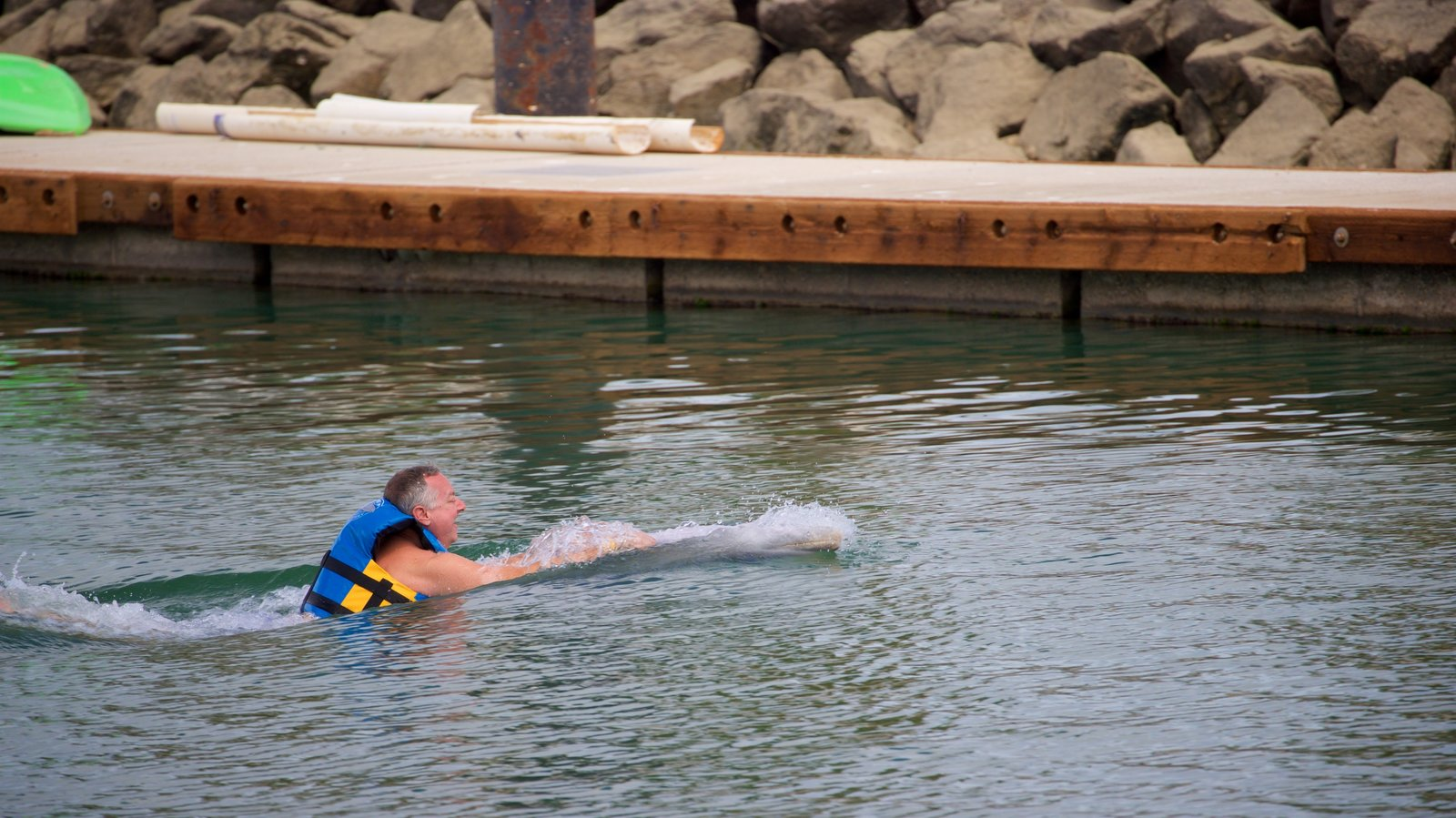 Dolphin Discovery Puerto Los Cabos which includes marine life and swimming as well as an individual male