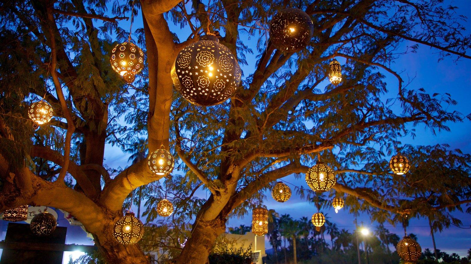 San Jose del Cabo Art District which includes night scenes and a garden