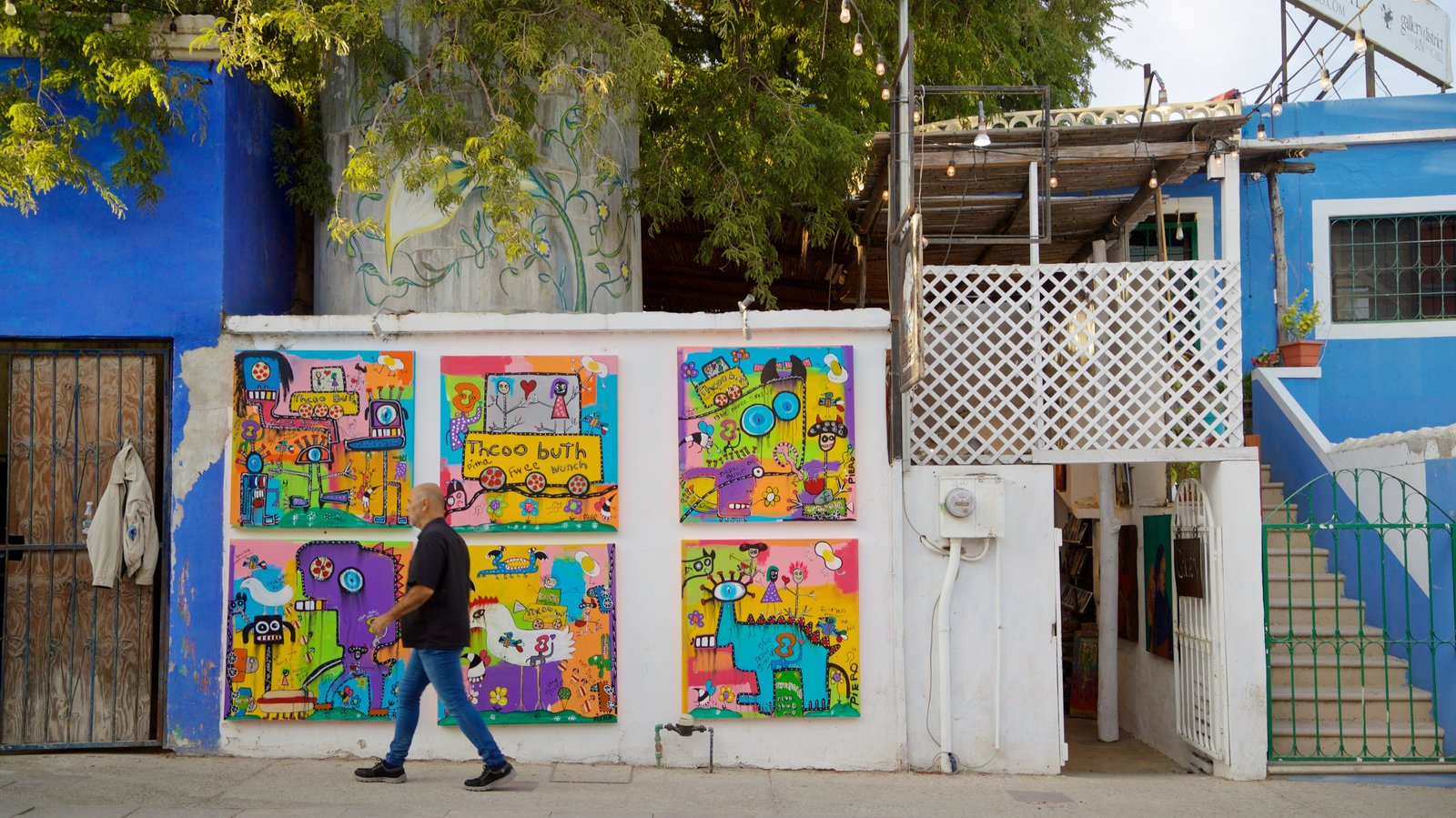 San Jose del Cabo Art District showing street scenes and outdoor art as well as an individual male