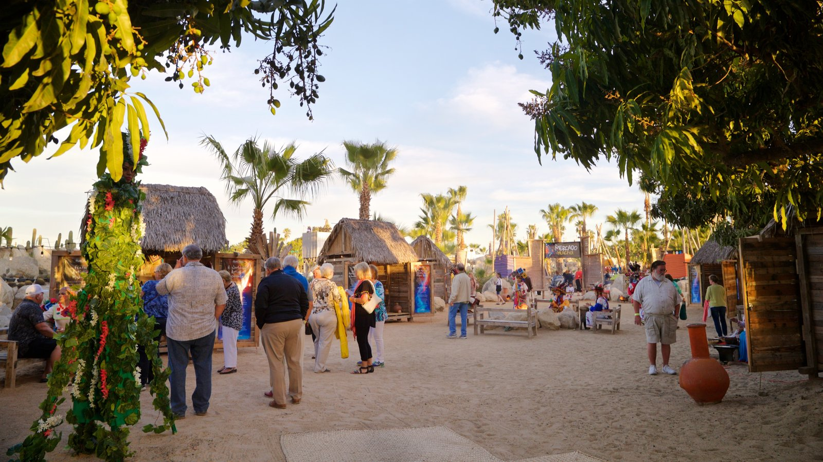 Wirikuta Garden showing a sandy beach, tropical scenes and a small town or village