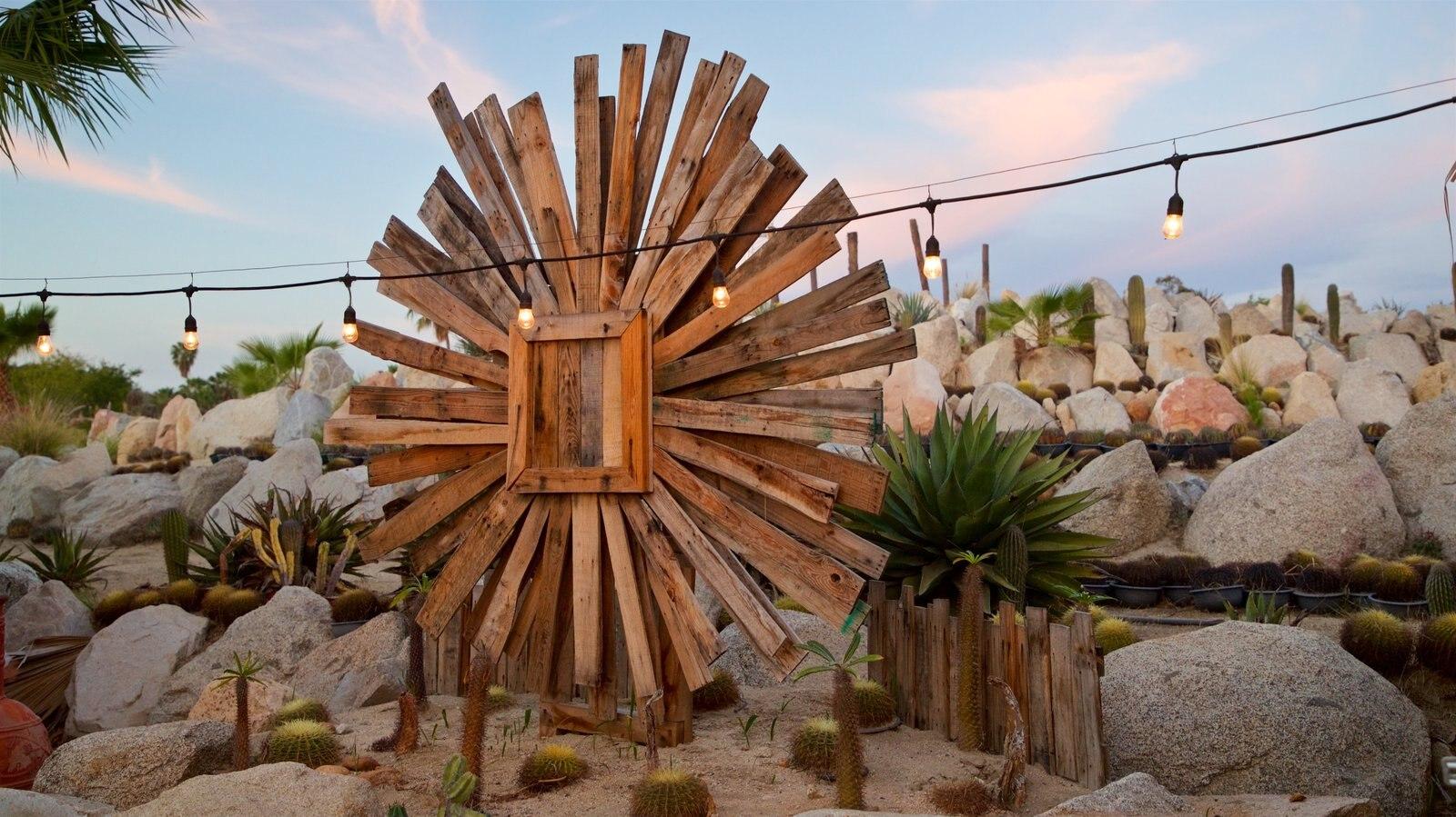 Wirikuta Garden showing outdoor art and a sunset