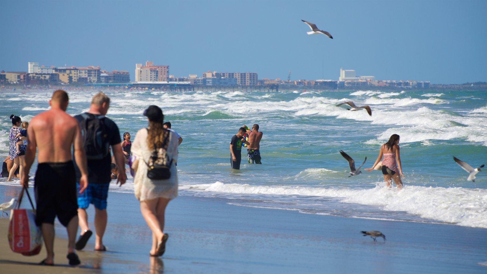 Cocoa Beach featuring a beach, general coastal views and swimming