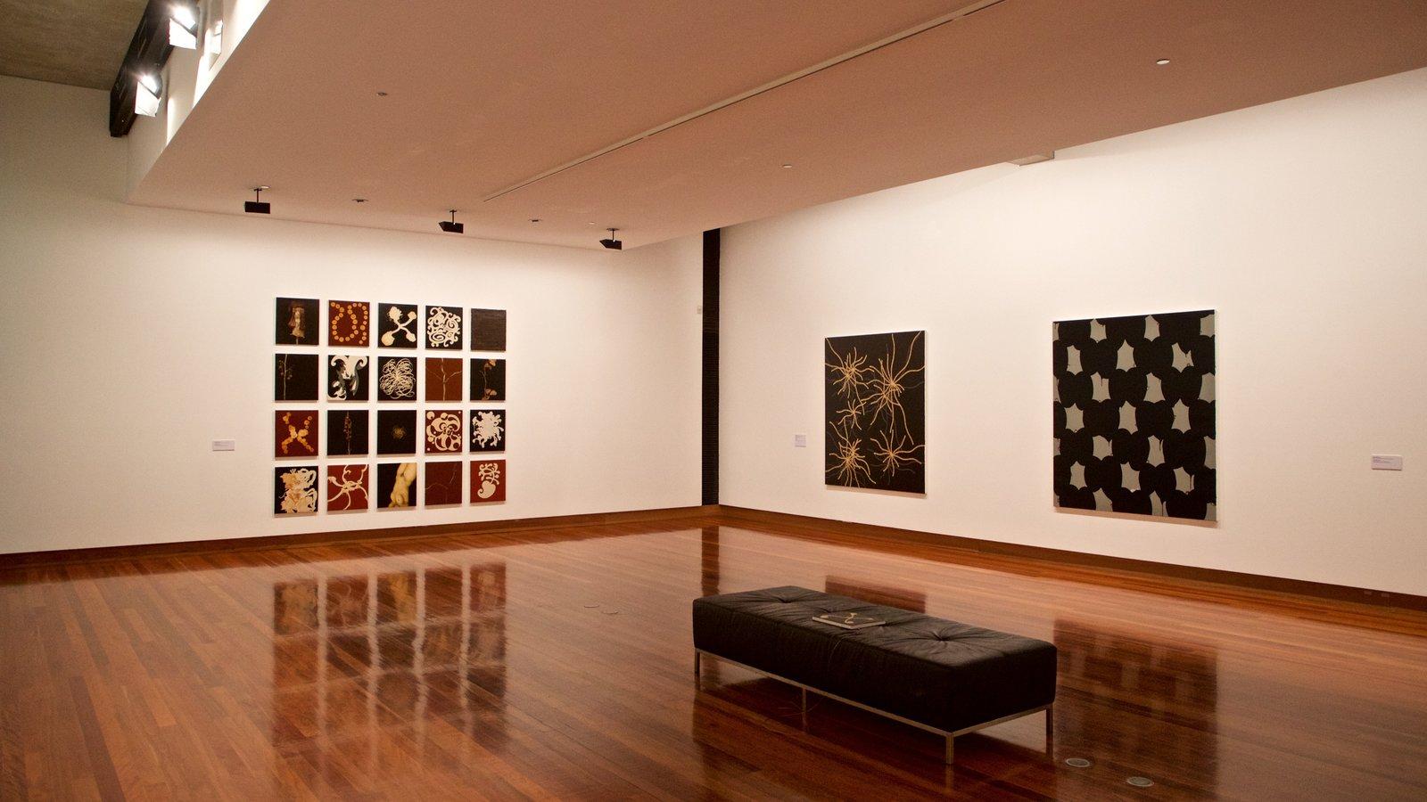 Museo de arte Ian Potter mostrando vistas interiores y arte